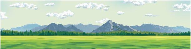 以山为背景的绿色沼地 库存图片