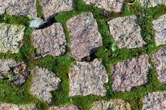 以摊铺机的形式被放置的花岗岩石头 在石头和青苔之间 库存图片