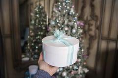 以新年的装饰的冷杉木为背景女性手拿着与一卷绿色磁带的一件白色礼物 库存照片