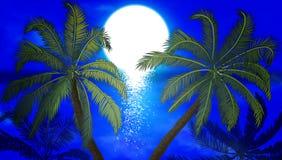 以水和夜日落为背景的棕榈 库存例证