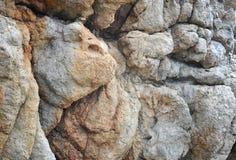 以狗的形式岩石 库存照片