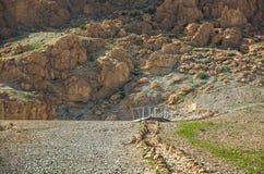 以色列沙漠 Qumran国家公园 库存图片