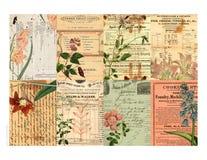 以花卉可打印的标签为特色的拼贴画 库存照片