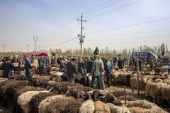 以货易货在绵羊,喀什星期天家畜的人销售,中国 免版税库存图片