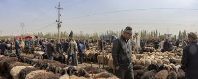 以货易货在绵羊,喀什星期天家畜M的人全景  库存照片