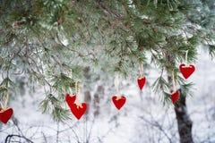 以透明球,毛毡的心脏的形式在圣诞树积雪的分支,圣诞节装饰垂悬 库存图片