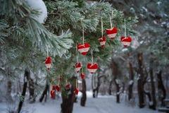 以透明球,毛毡的心脏的形式在圣诞树积雪的分支,圣诞节装饰垂悬 图库摄影