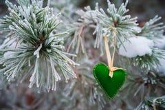 以透明球,毛毡的心脏的形式在圣诞树积雪的分支,圣诞节装饰垂悬 免版税图库摄影