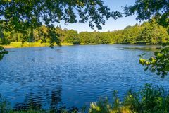 以高绿色叶茂盛树为背景的一个大蓝色清楚的湖在夏天太阳 图库摄影
