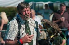 以鹰狩猎者显示westmorland 免版税库存图片