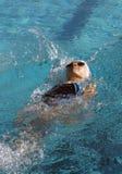 仰泳女孩一点游泳 库存图片