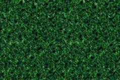 任意绿色s自然样式 免版税图库摄影