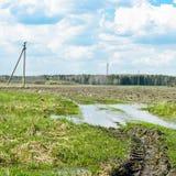 任意 水坑在领域的郊区 免版税库存照片