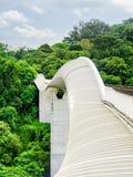 仿效波浪的惊人的桥梁 弯曲走道在新加坡 免版税图库摄影