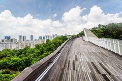 仿效波浪,新加坡的惊人的桥梁美妙的看法 库存照片