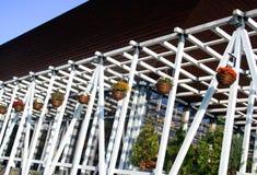 仿照建筑学样式的木树荫处 免版税库存图片