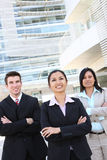 企业不同的办公室小组 免版税库存照片