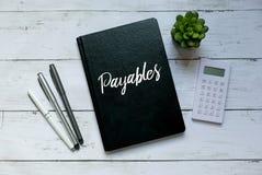 企业和财务概念 植物、计算器、笔和笔记本顶视图写与应付款管理系统 库存图片