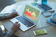 企业图表和图的综合图象 免版税库存照片