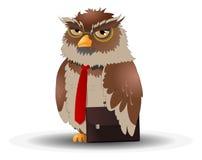 企业在白色背景的猫头鹰姿势 免版税库存图片