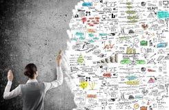 企业女实业家图画计划 免版税库存照片