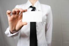 企业女实业家看板卡藏品 嘲笑 复制空间 免版税库存照片