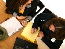 企业小组妇女 免版税库存图片