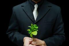 企业成长 免版税库存图片