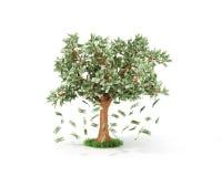 企业或储款概念  库存照片