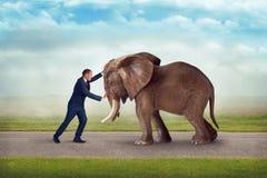 企业挑战大象障碍 免版税库存照片