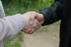 企业握手的特写镜头,在森林里 免版税库存照片
