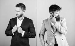 企业时尚豪华男服 经理的正式成套装备 商人时髦的出现夹克桃红色蓝色背景 库存图片