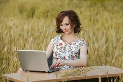 企业概念坐在书桌使用在领域的一台计算机的射击了一个美丽的少妇 库存图片