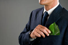 企业绿色 库存照片