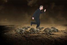企业老鼠赛跑,事业,重音 免版税库存照片