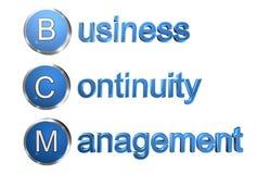 企业连续性管理 库存例证