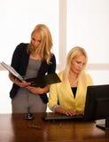 企业队-工作检查数据库的两名妇女在办公室 库存图片