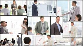 企业介绍 股票录像