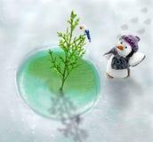 企鹅和他冰冷的世界 免版税库存图片