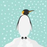 企鹅国王在冰山雪的皇帝Aptenodytes Patagonicus在天空平的设计冬天南极洲背景中 库存照片