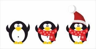 企鹅圣诞老人 免版税库存照片