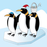 企鹅家庭 图库摄影