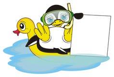 企鹅潜水者举行一块干净的板材 免版税库存照片