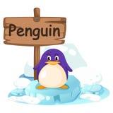 企鹅的动物字母表信件P 图库摄影