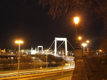 伊丽莎白桥梁 图库摄影