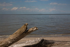 伊利湖岸线 库存图片