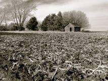 伊利诺伊在收获以后的农田富有,黑土壤  免版税库存照片
