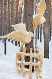 伊尔库次克地区,俄罗斯1月, 03 2015年:在笼子外面的鸟 木雕塑公园在Savvateevka村庄 库存图片