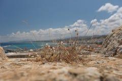 伊拉克利翁口岸,克利特希腊 图库摄影