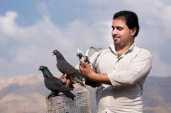 伊拉克鸽子收藏家 图库摄影